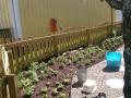 Plantering och anläggning radhustomt Trångsund
