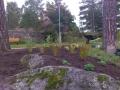 Anläggning och plantering av perennarabatt, Södertälje
