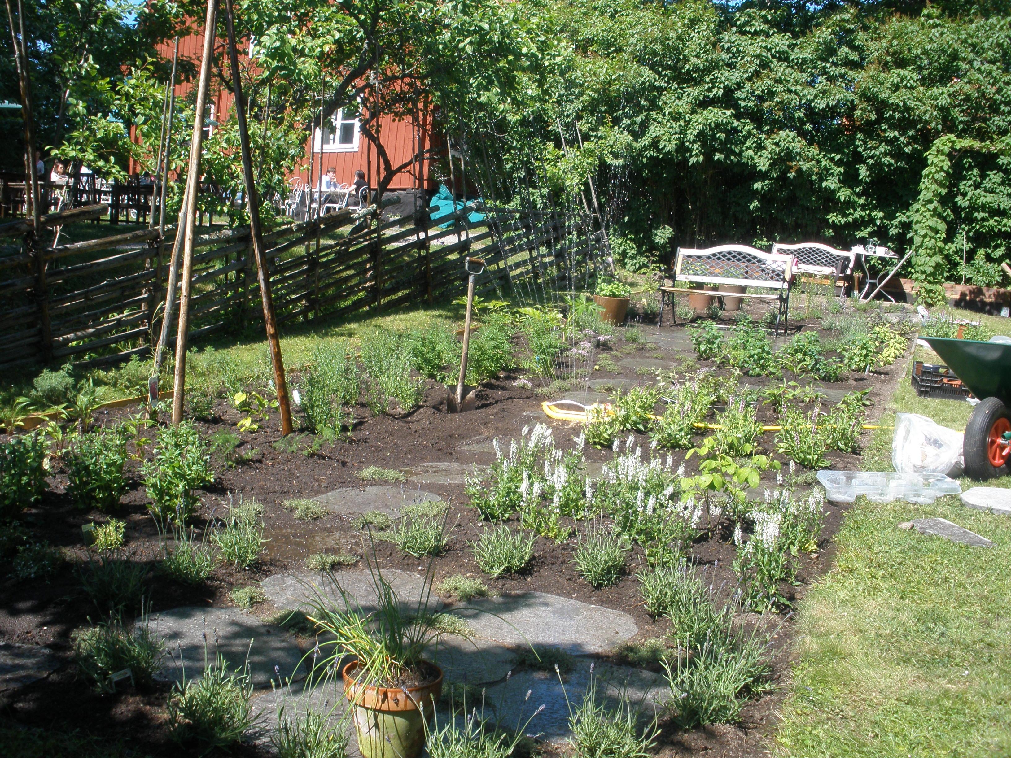 Omgjord och nyplanterad örtagård, Lidingö
