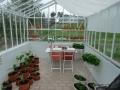 Vårkanten i ett växthus