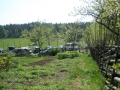 Övergiven örtagård, Lidingö